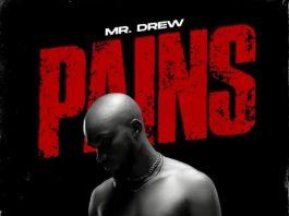 Mr. Drew - Pains (Prod. by Beatz Vampire)